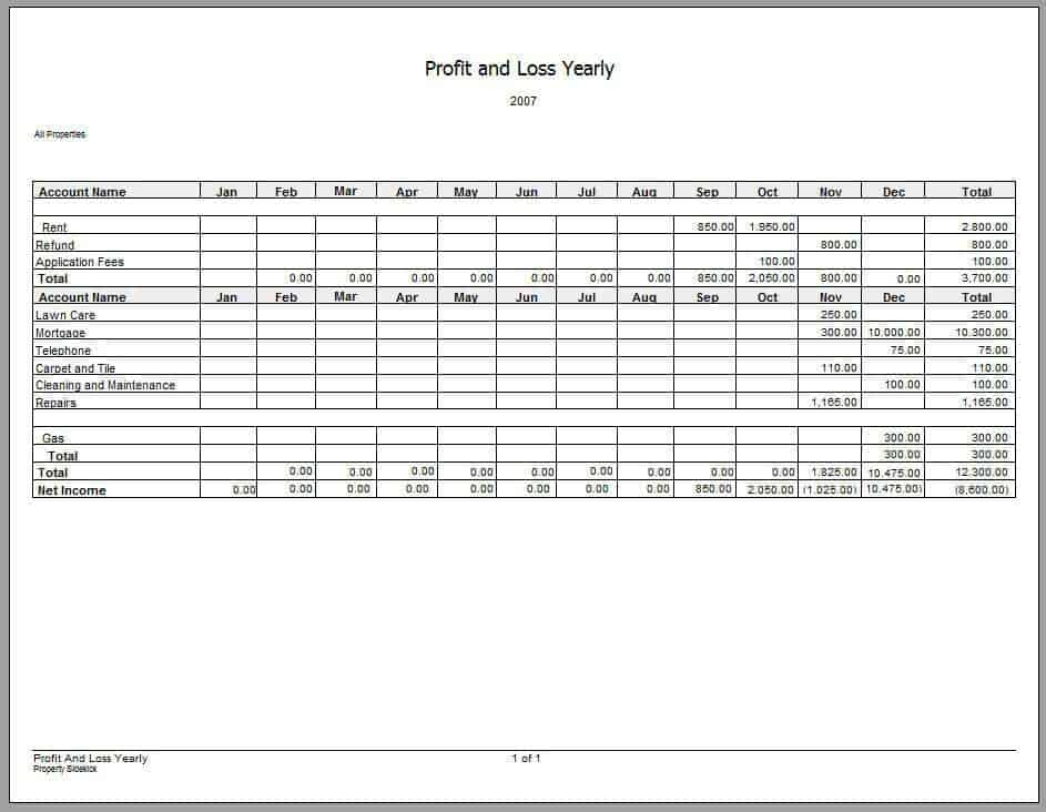 Doc460595 Quarterly Profit and Loss Statement Income – Profit and Loss Template Simple