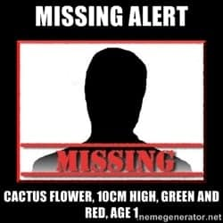 missing person poster template 35411